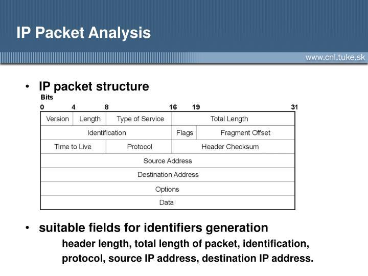 IP Packet Analysis