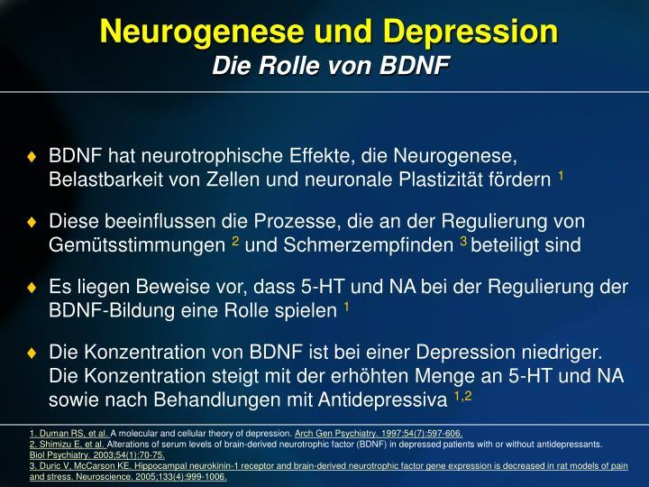 Neurogenese und Depression