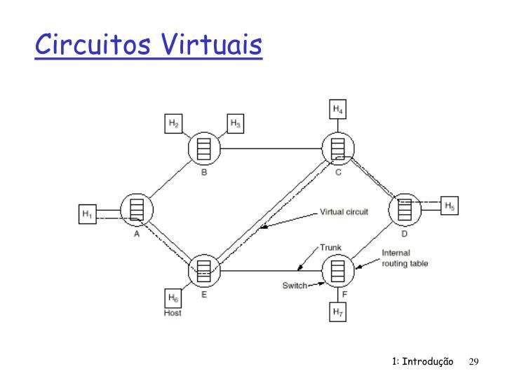 Circuitos Virtuais