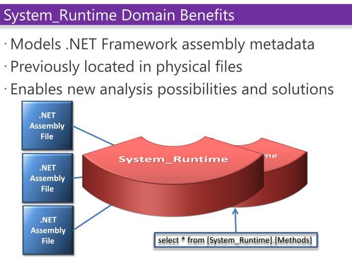 Models .NET Framework assembly metadata