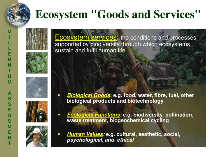 "Ecosystem ""Goods and Services"""