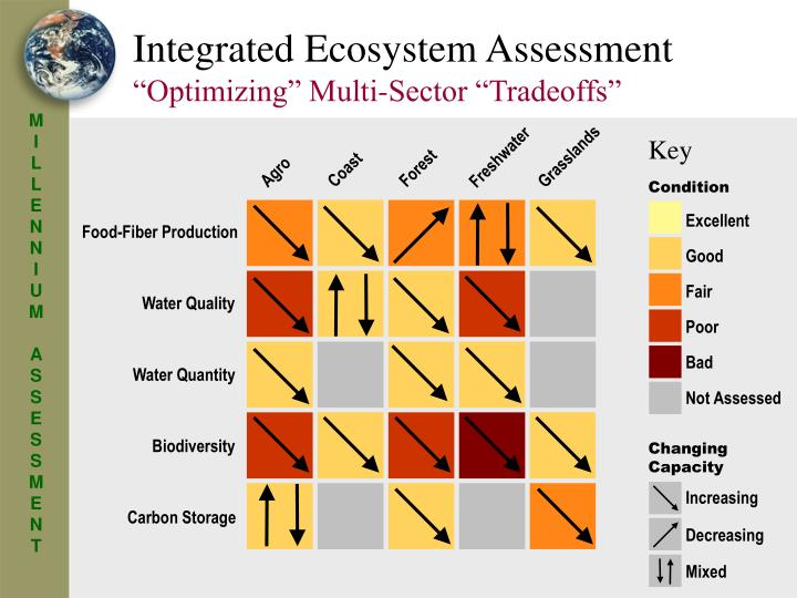 Integrated Ecosystem Assessment