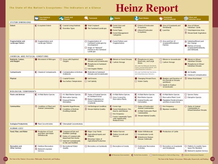 Heinz Report
