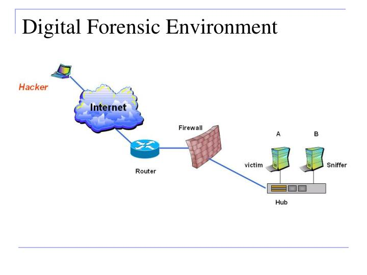 Digital Forensic Environment