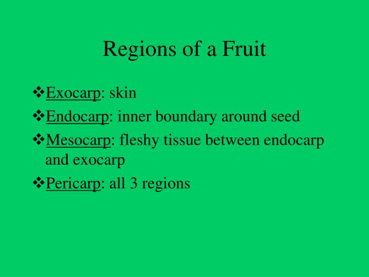 Regions of a Fruit