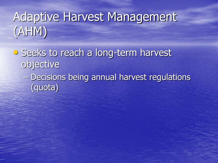 Adaptive Harvest Management (AHM)