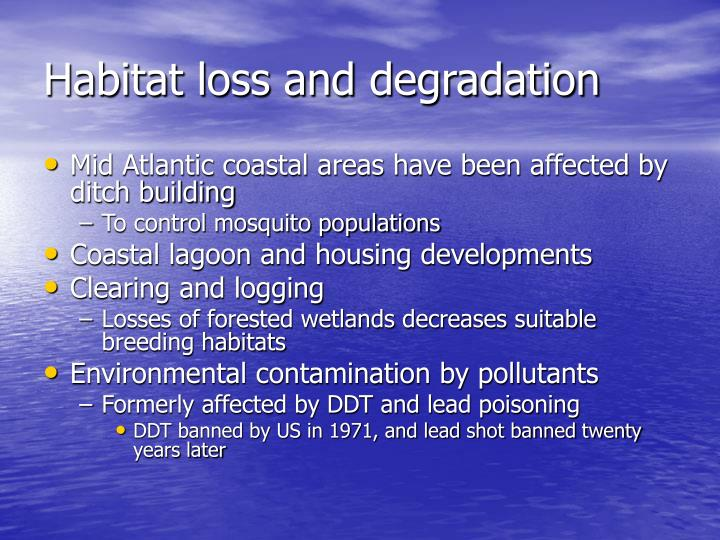 Habitat loss and degradation