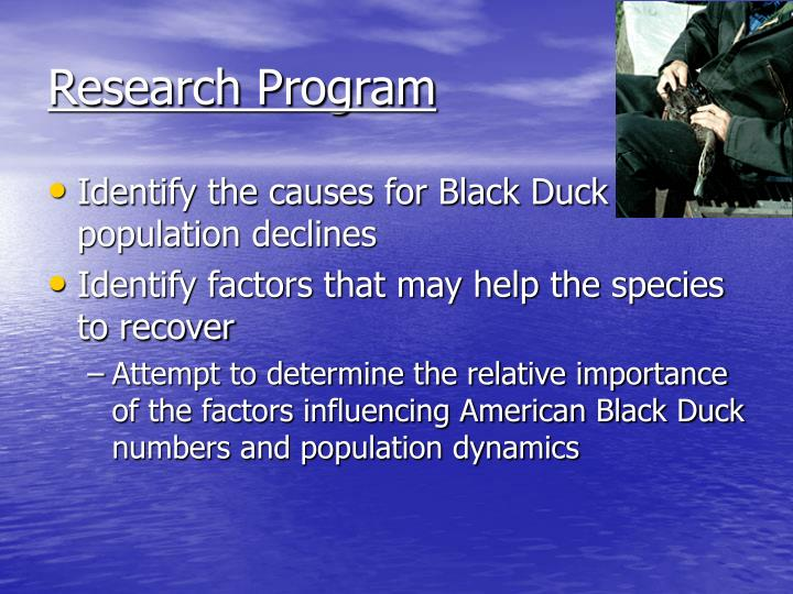 Research Program