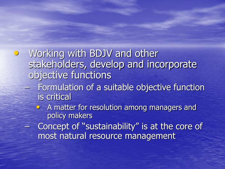 Working with BDJV and other stakeholders, develop and incorporate objective functions