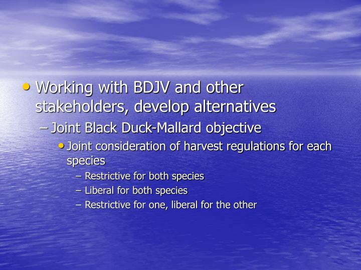 Working with BDJV and other stakeholders, develop alternatives