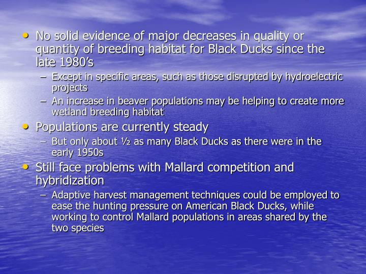 No solid evidence of major decreases in quality or quantity of breeding habitat for Black Ducks since the late 1980's