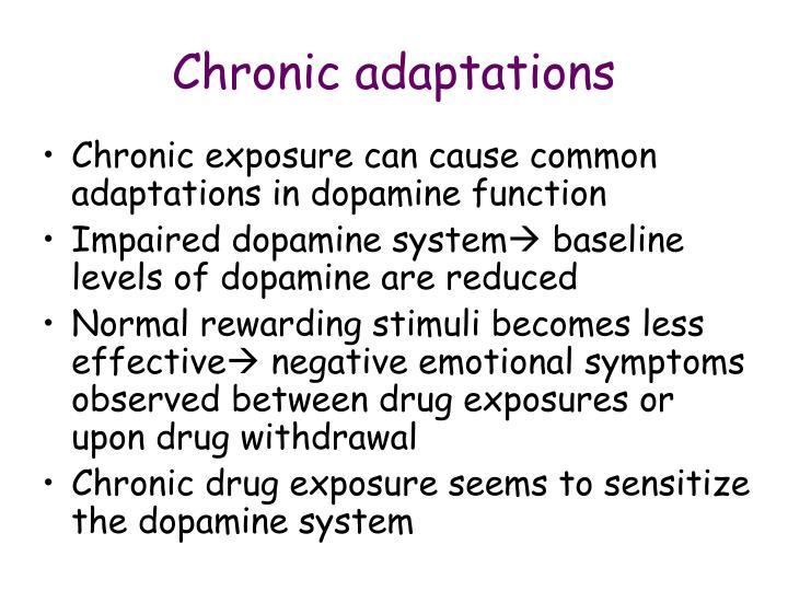 Chronic adaptations