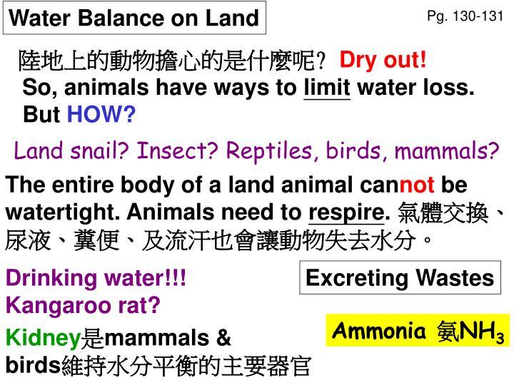 Water Balance on Land
