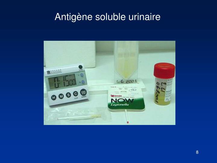 Antigène soluble urinaire