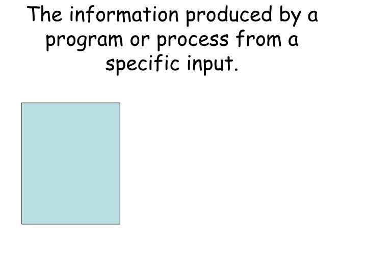 The information produced by a program or process from a specific input.