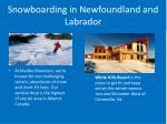 snowboarding in newfoundland and labrador