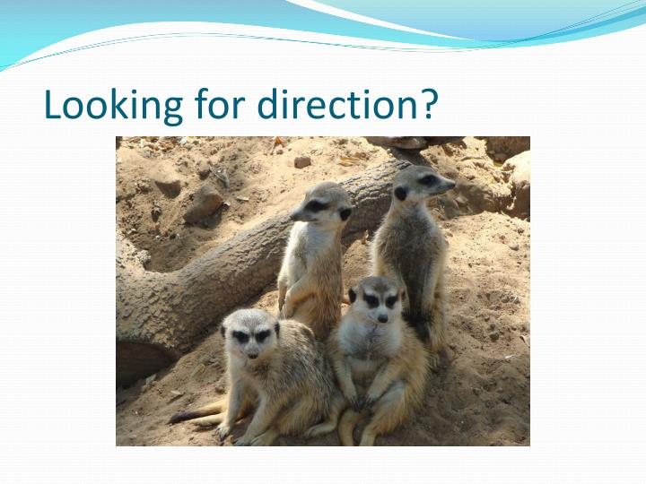 Looking for direction?