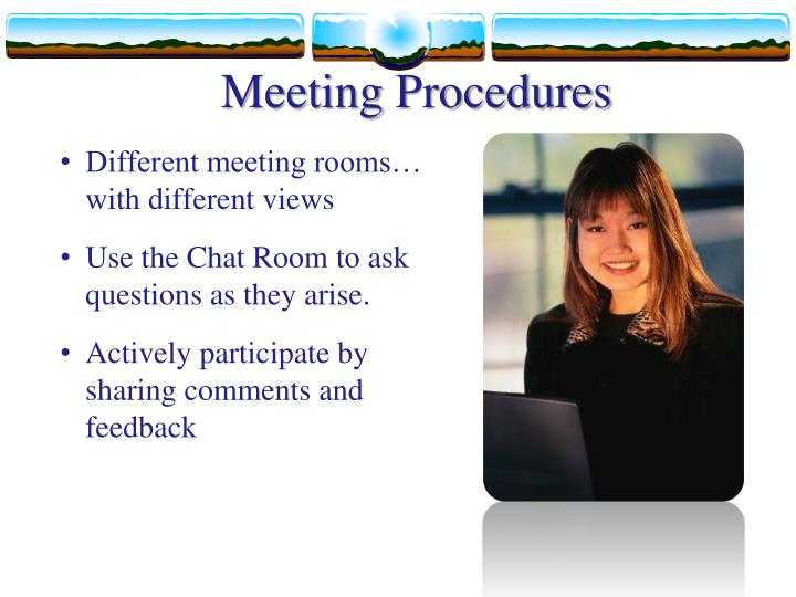 Meeting Procedures