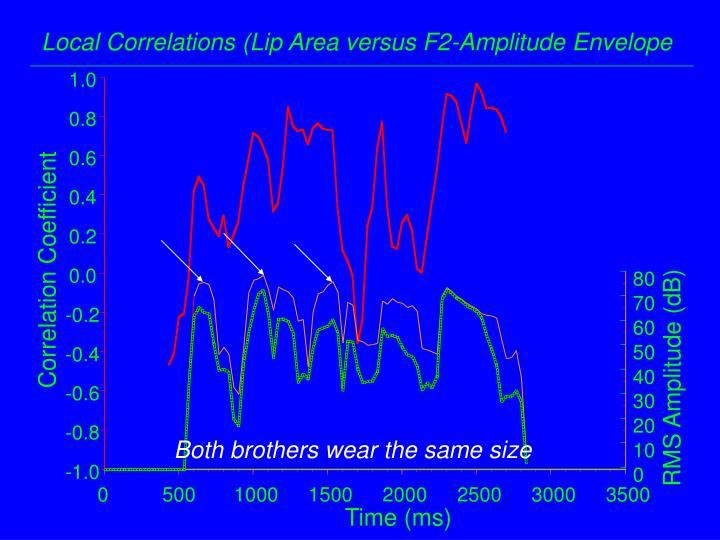 Local Correlations (Lip Area versus F2-Amplitude Envelope