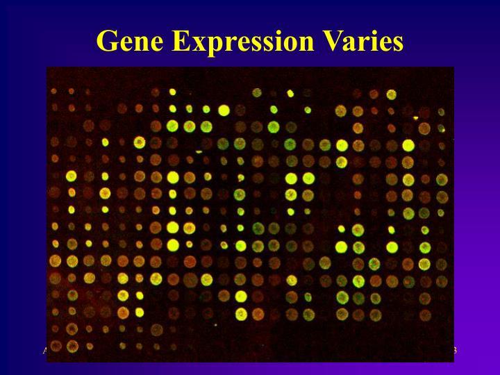 Gene Expression Varies