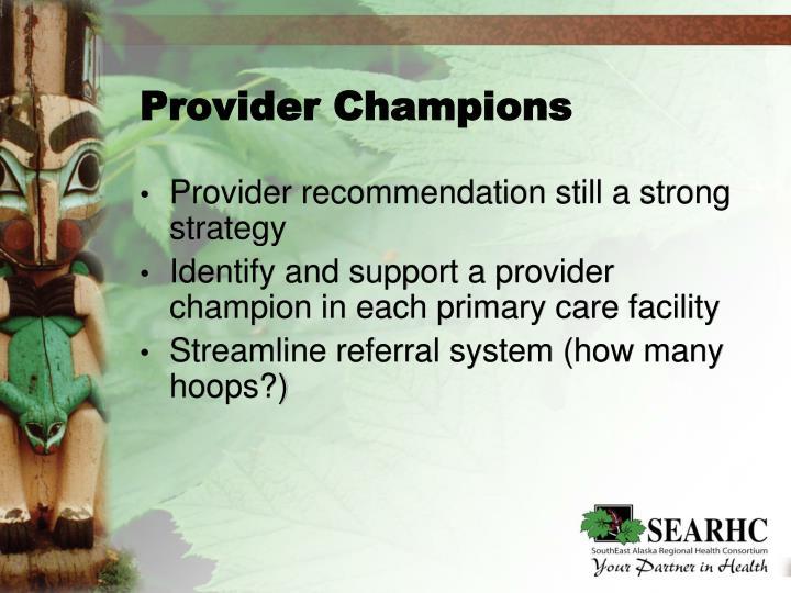 Provider Champions