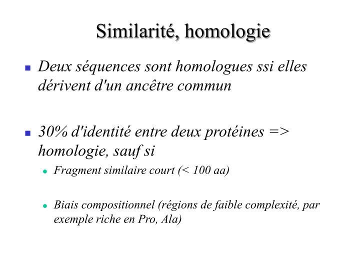 Similarité, homologie