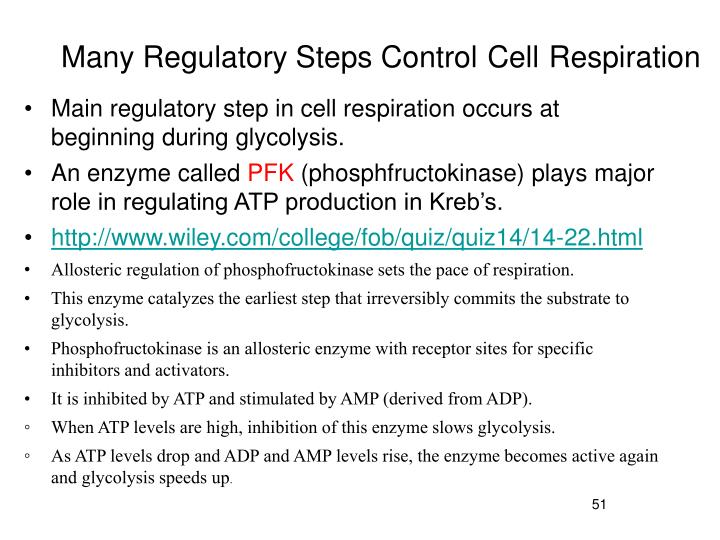 Many Regulatory Steps Control