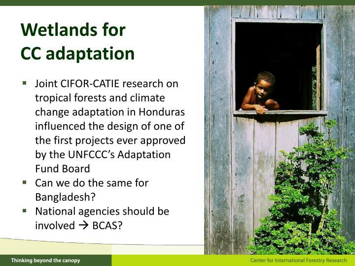 Wetlands for