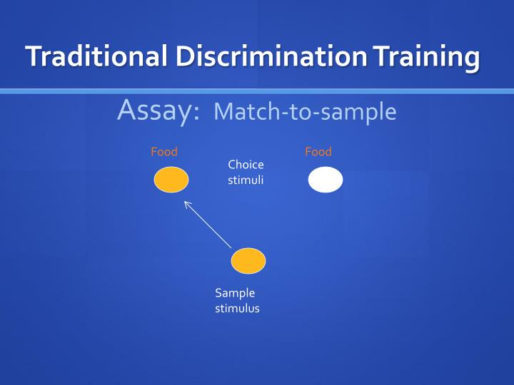 Traditional Discrimination Training