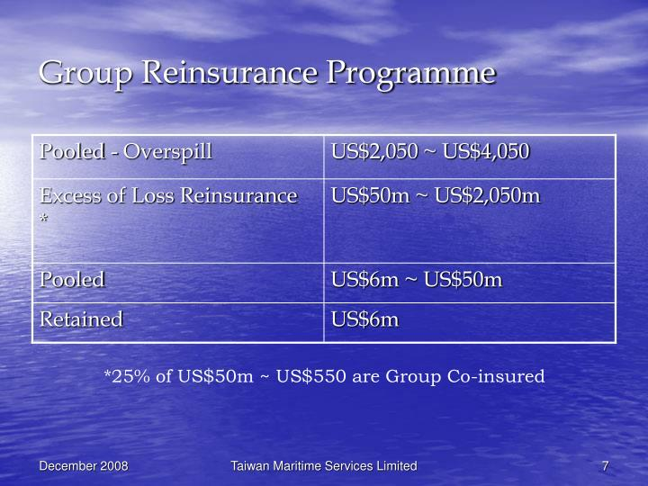 Group Reinsurance Programme