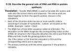d 28 describe the general role of dna and rna in protein synthesis3