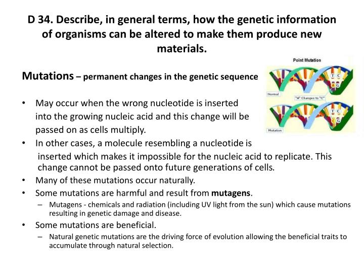 D 34. Describe, in general terms, how the genetic information of organisms can be altered to make them produce new materials.
