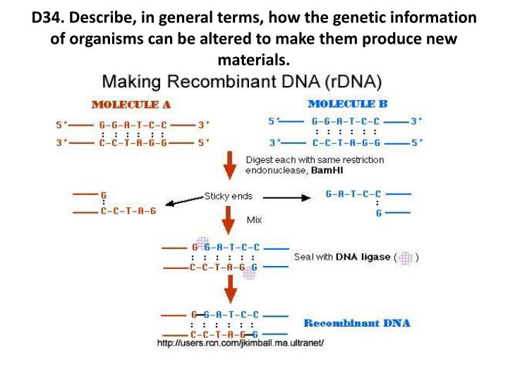 D34. Describe, in general terms, how the genetic information of organisms can be altered to make them produce new materials.