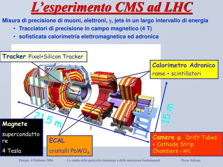 L'esperimento CMS ad LHC