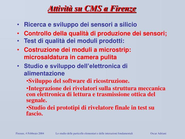 Attività su CMS a Firenze