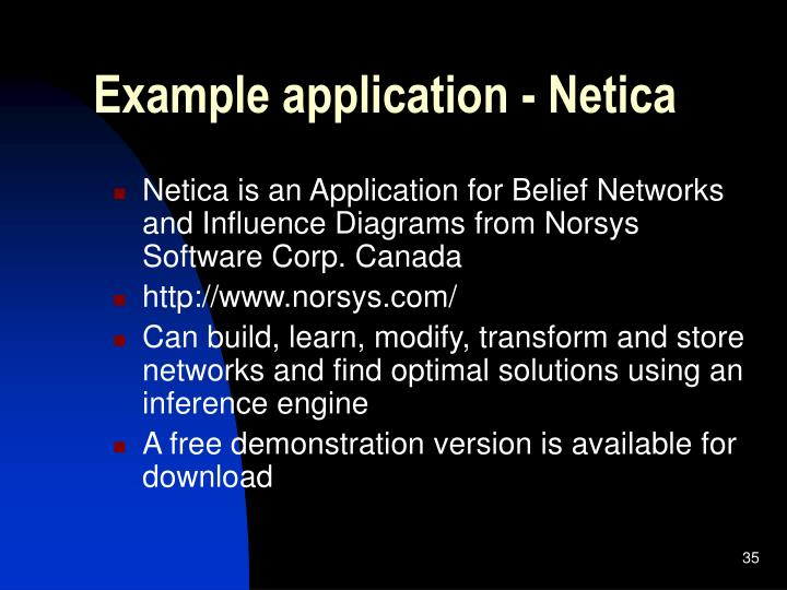 Example application - Netica