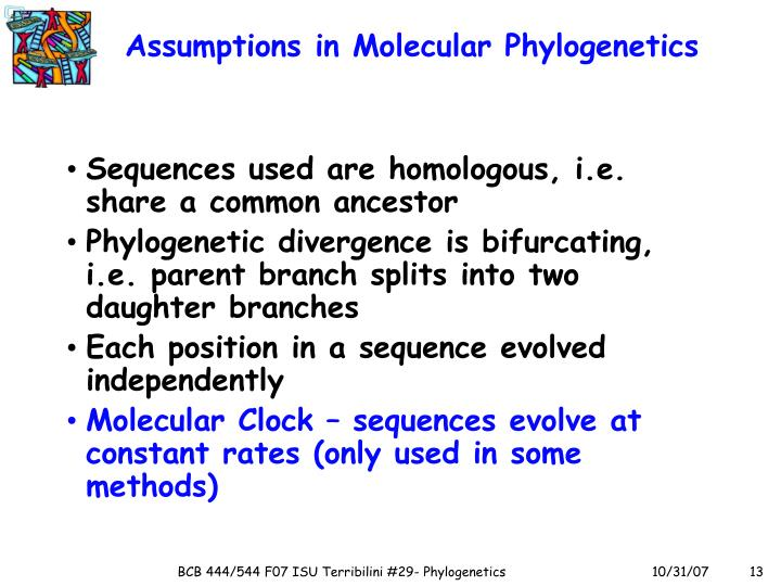 Assumptions in Molecular Phylogenetics