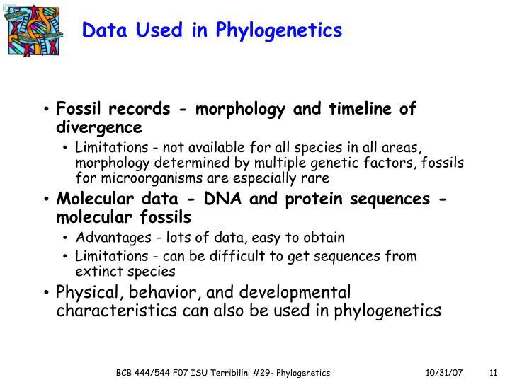 Data Used in Phylogenetics