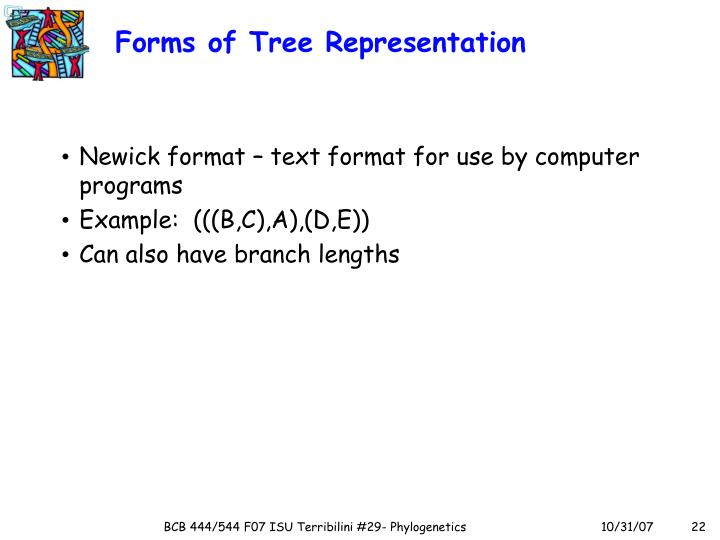 Forms of Tree Representation