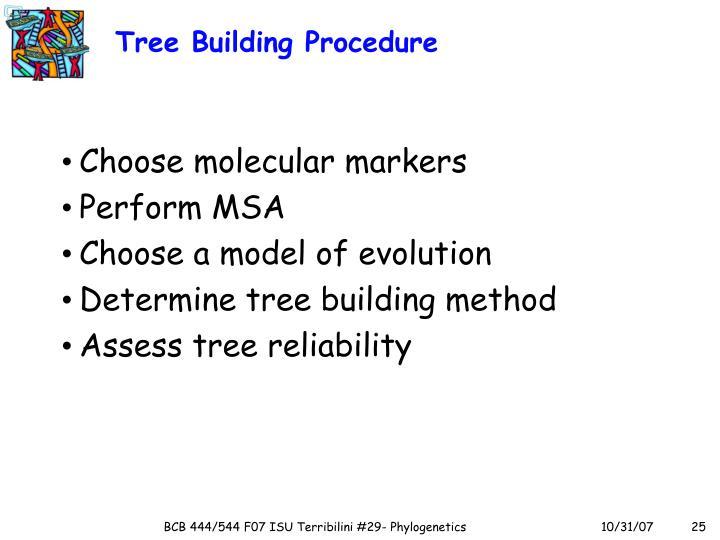 Tree Building Procedure
