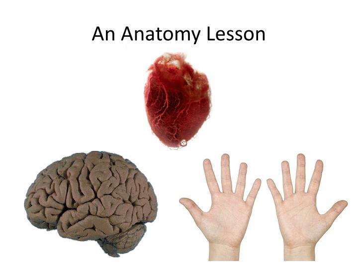 An Anatomy Lesson