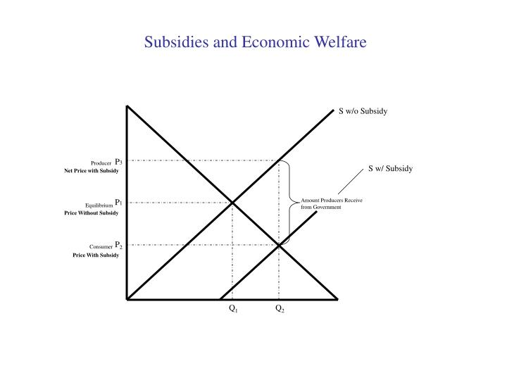 Subsidies and Economic Welfare