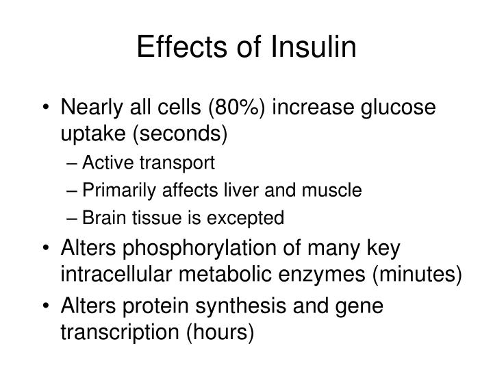 Effects of Insulin