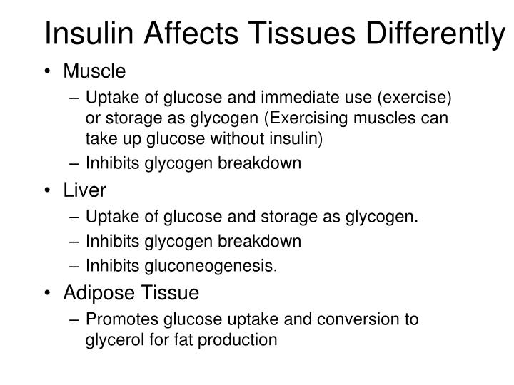 Insulin Affects Tissues Differently