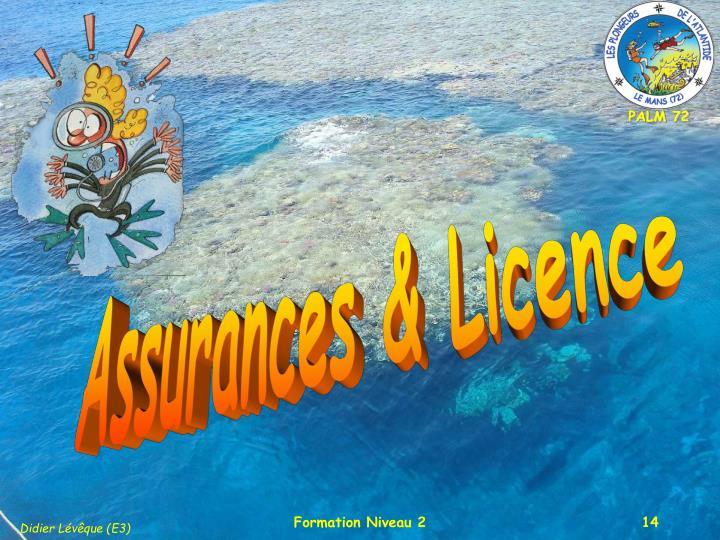Assurances & Licence