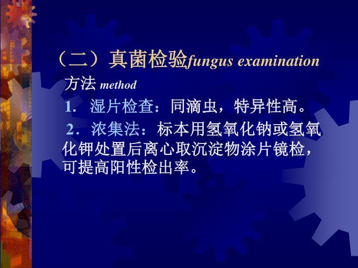 (二)真菌检验