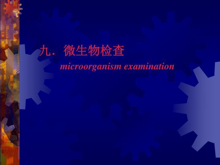 九.微生物检查