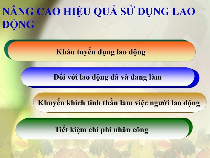 NÂNG CAO HIỆU QUẢ SỬ DỤNG LAO ĐỘNG