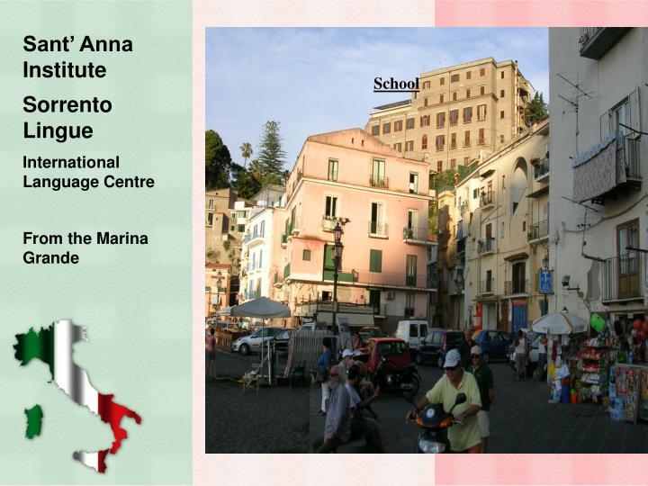 Sant' Anna Institute