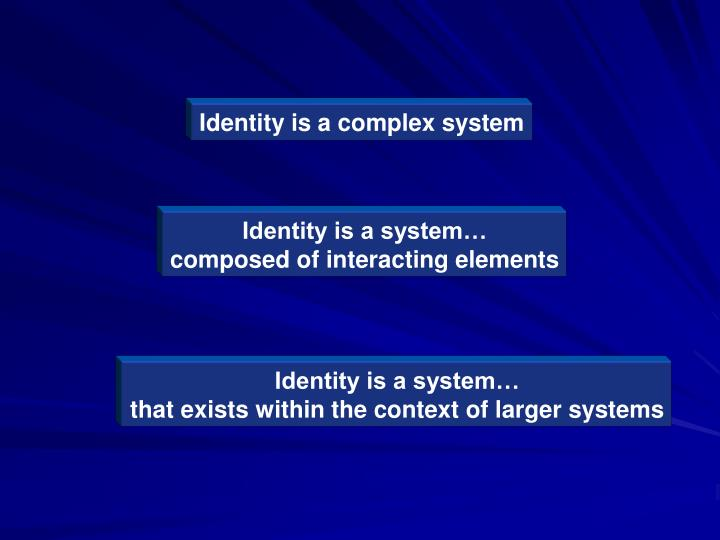 Identity is a complex system